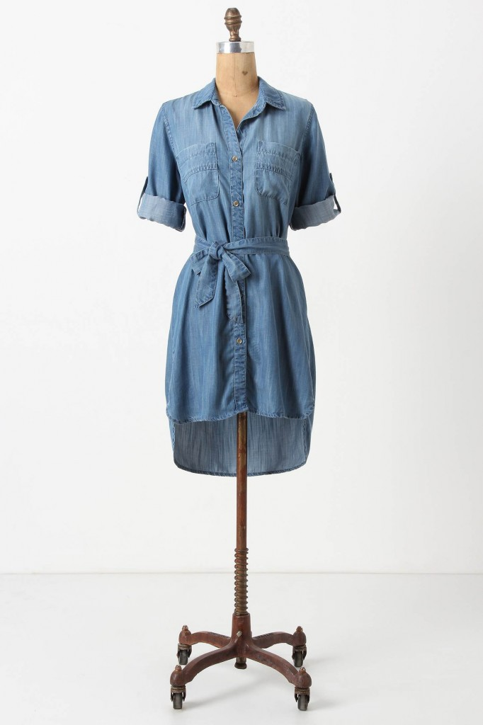 Fremont Shirtdress