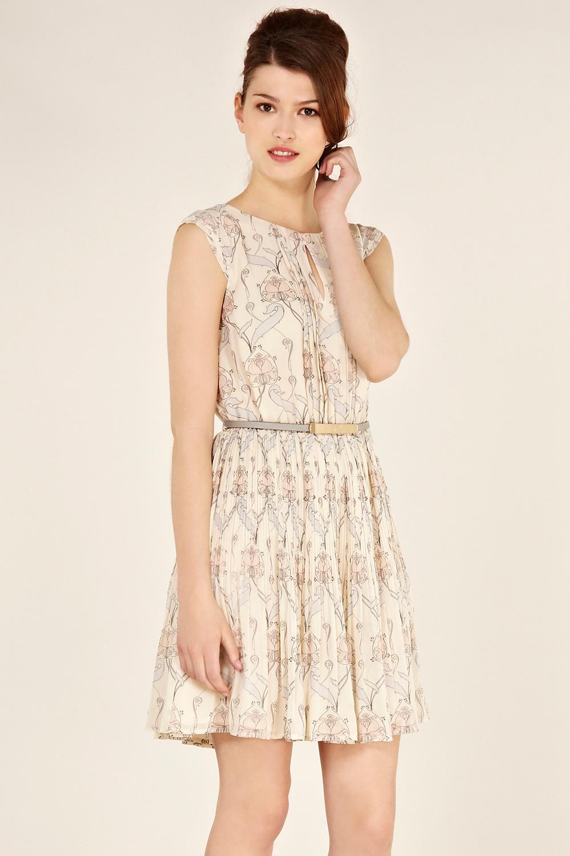 Nouveau Fantasy Dress from Oasis
