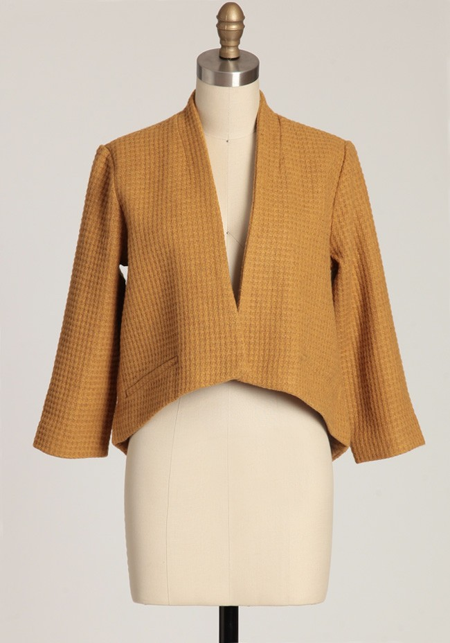 Suki blazer by BB Dakota